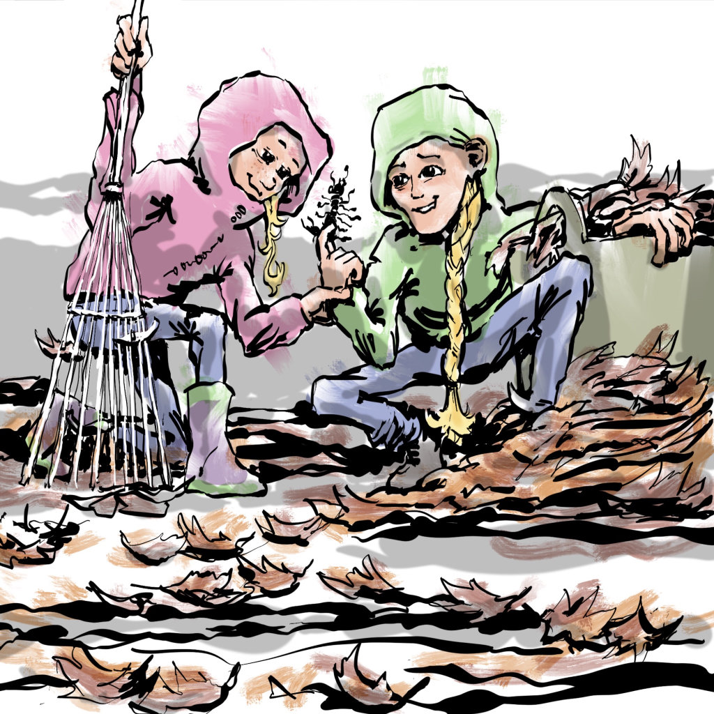 Illustration by Nick James Illustrator. The travelling Twins discover an insect while clearing leaves.